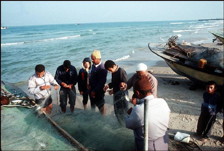 الصيادون 1991