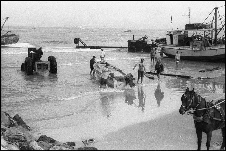 الصيادون 1996