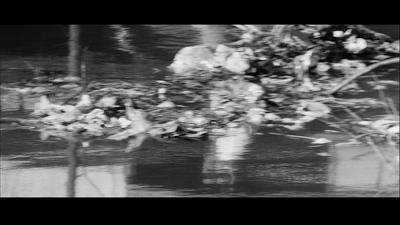 vlcsnap-2009-08-06-14h12m41s198
